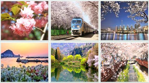 Spring in Korea. Picture via english.visitkorea.or.kr