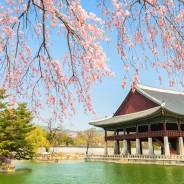 Korea Cultural Camp by AYFN 2016 (Spring)